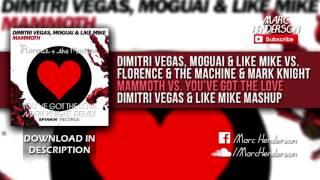 DV&LM & Moguai vs. Florence & The Machine - Mammoth vs. You've Got The Love (DV&LM Mashup)