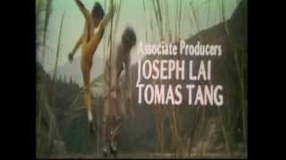 The Blazing Ninja Intro (1973)