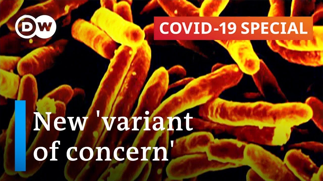 Delta variant doubles risk of COVID hospitalisation: Scottish study