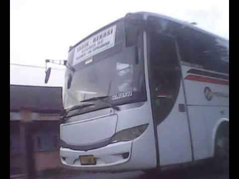 Telolet Bus Primajasa indonesia