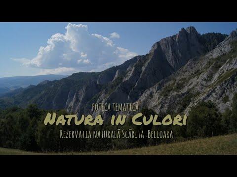 Natura in Culori
