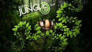 Sound - Military Alarm | AudioJungle Download
