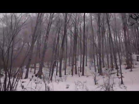 hunting wild boar --- Lov na divljeg vepra bukovik 2016