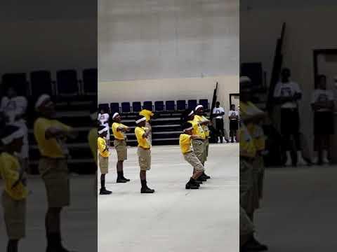 Tiger Steppers- Jefferson County Elementary School-Fayette, MS