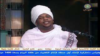 طه المنومسة - الراوي الشيخ فضل الله - أولاد حاج الماحي