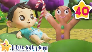 Fairy Tale Song | How To Nursery Rhymes | Fun Learning with LittleBabyBum