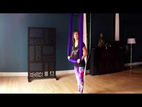 AntiGravity Yoga - Flying Dog Series