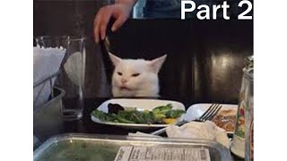 Confused Cat Memes   Cont'd