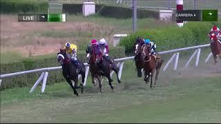 Vidéo de la course PMU PREMIO PAR DE ASES