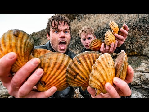 SCALLOP DIVING - Catch & Cook On The South Coast Of England For A 3 Course Dinner!