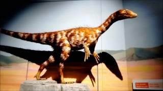 Vlog 73. Cardiff Holiday - Museum & Bay