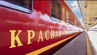 Красная стрела. Как живет главный поезд страны сегодня?