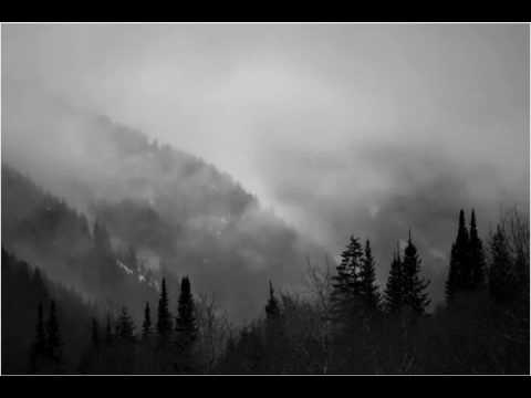 Woods of Ypres - Distractions of Living Alone