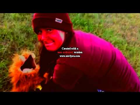 Tropical Grasslands Music Video