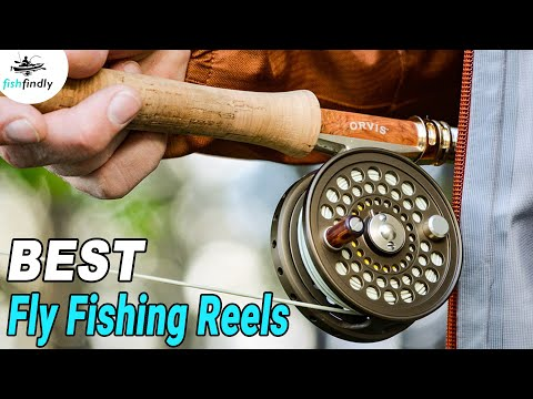 Best Fly Fishing Reels In 2020 – Expert Buying Guide