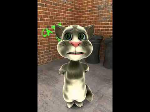 Tom cat singing I Just Had Sex