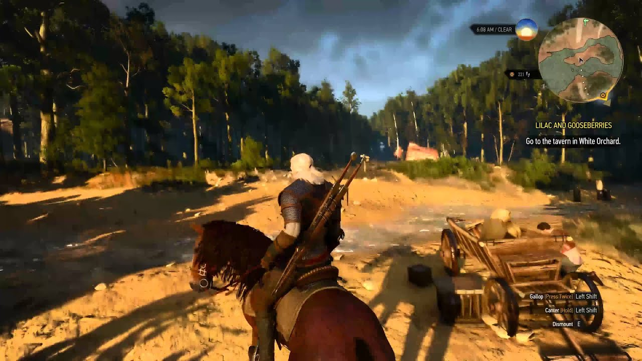 Witcher 3 ultra graphics 60 fps webcam