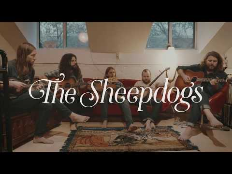 The Sheepdogs - Old man (Neil Young Cover)
