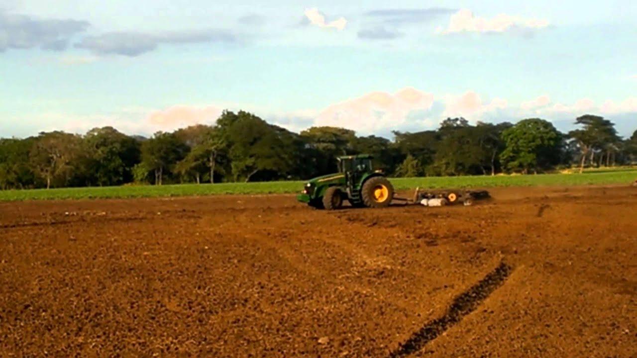 Preparando terreno para siembra de mel n youtube - Preparacion de la tierra para sembrar ...