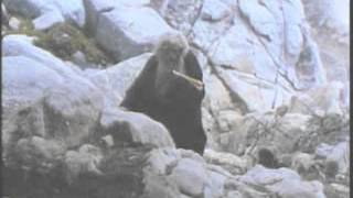 The Late Great Planet Earth (1978) Part 3