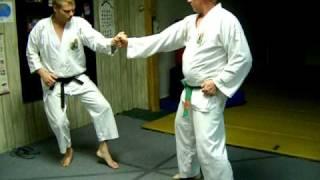 Tatsuo's Kumite Part 1