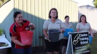 Ice Bucket Challenge - Canine Training School And North Qld Animal Rescue