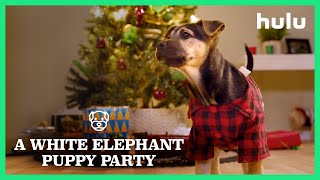 Holiday Scenics: A White Elephant Puppy Party • Home is Where the Hulu Is