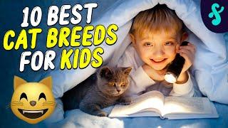 Top 10 Best Cat Breeds For Kids | Furry Feline Facts