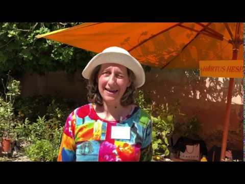 Hortus Hesperidis - FLORACULT 2019