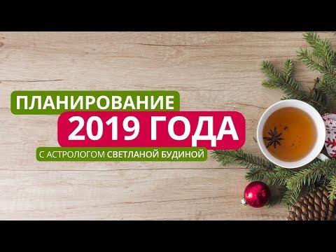 Планирование 2019 года со Светланой Будиной