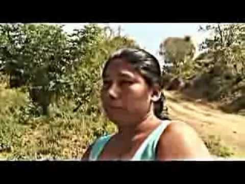 MENTIRAS DEL DIARIO EL UNIVERSO DE ECUADOR .