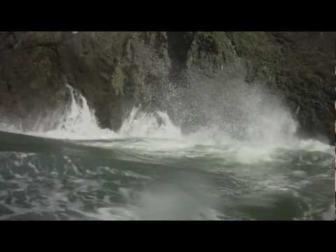 A clip from, Point Bonita Rock gardening- Neptune's Rangers