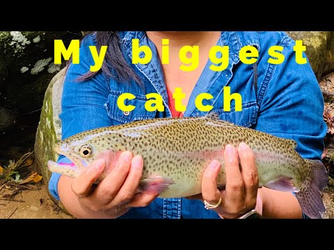 Best Bait For Trout  Fishing Catch And Release 🎣 Part Two!!Happy Fall Season 2020🍂🍁