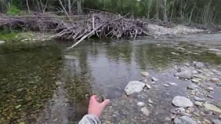 Рыбалка в Приморье. Река Милоградовка  13 - 15.07.2018 г