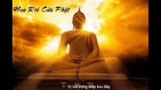 [Lyrics] Hoa Rơi Cửa Phật - Jombie Ft LeeYang & Sino