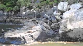 South Island, NZ Part IV: Queenstown to Milford Sound