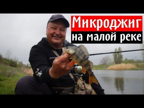 На что ловить окуня? Микроджиг на малой реке