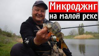 На что ловить окуня Микроджиг на малой реке