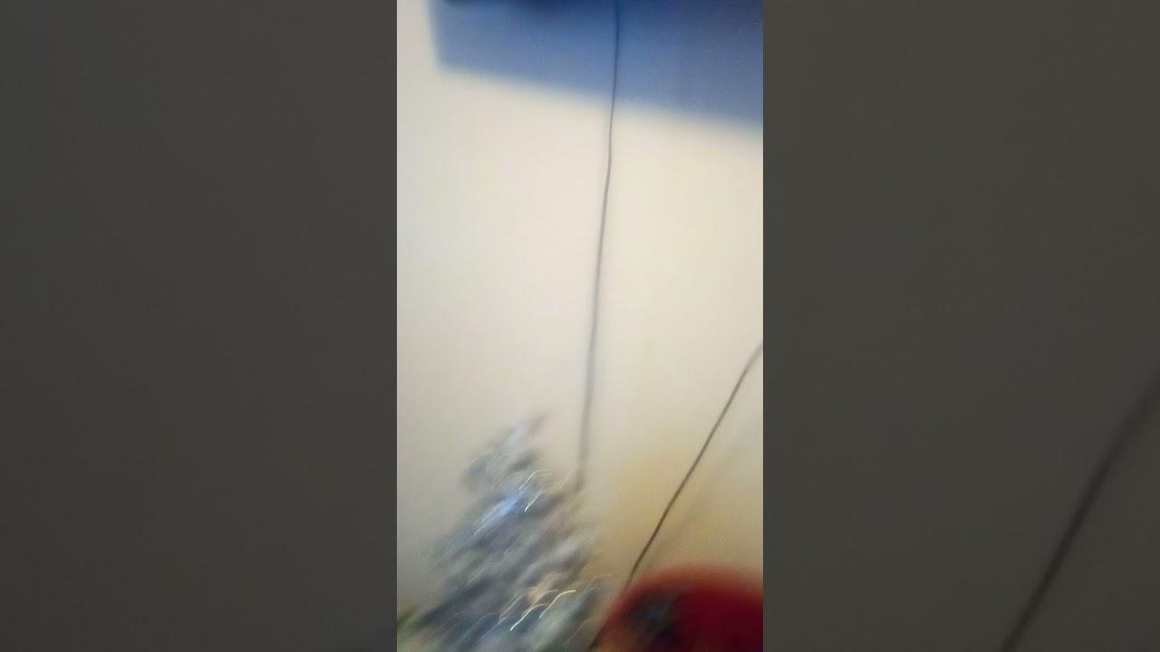 ninja kid music video sing by Braxton