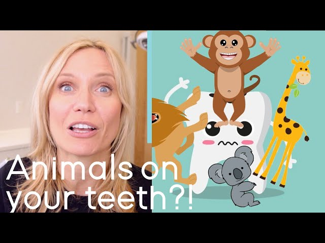 Cavities Explained for Kids!