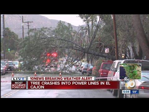 Tree crashes into power lines in El Cajon
