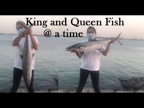 Fishing in  Abu Dhabi 2020 (King and Queen fish @ a time} Ep.9