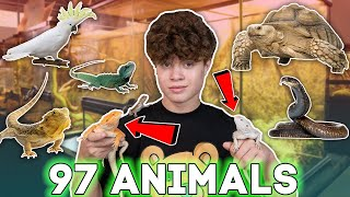 MEET ALL OF MY PETS (90+ EXOTIC ANIMALS) | ft. Gavin Magnus