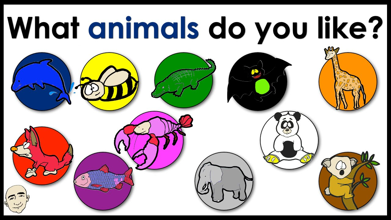 What animals do you like name of animals colors for What color do you like