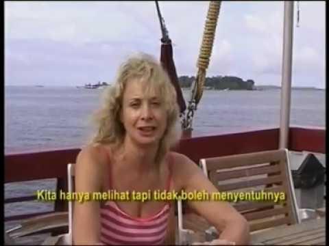 RAJA AMPAT DALAM FILM