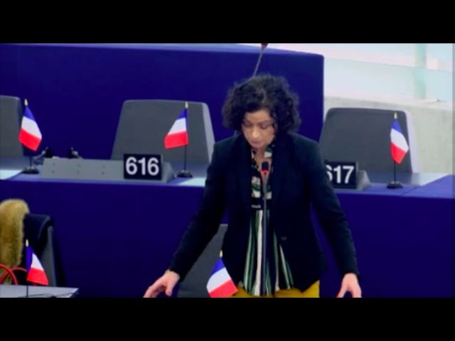 Christelle Lechevalier sur les énergies propres