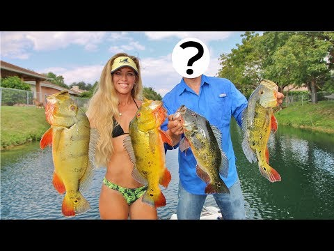 Florida Freshwater Bass Fishing In The Canals Of Palm Beach