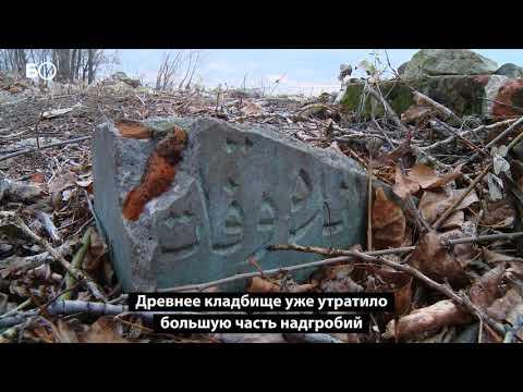 В Казани мусульманское кладбище времен Казанского ханства превратилось в свалку
