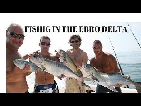 FISHING IN THE EBRO DELTA. LA PESCA EN EL DELTA DEL EBRO
