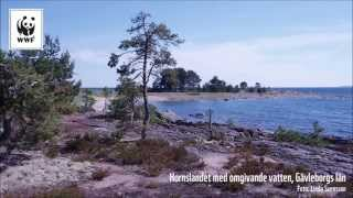 WWFs Svenska Pärlor 2014
